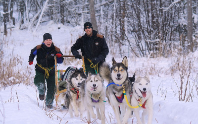 expedition-wolf-traineau-marley-et-neige